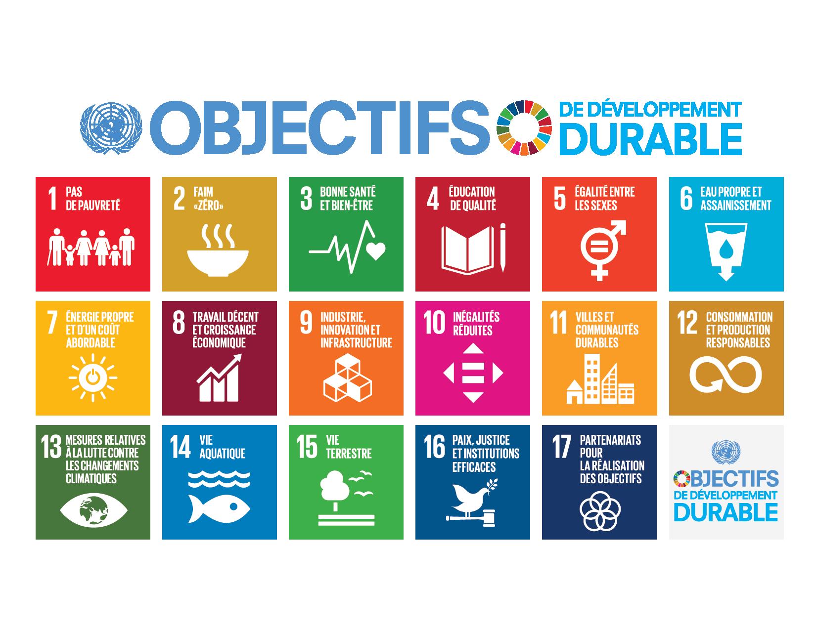 Représentation officielle des 17 ODD avec le code de chaque objectif, son thème et sa couleur distinctive.
